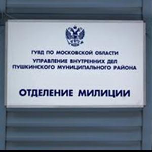 Отделения полиции Васильевского Моха