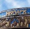 Зоопарки в Васильевском Мхе